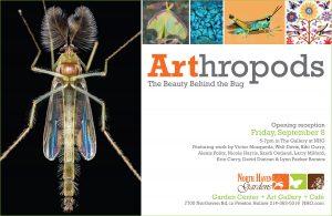 DHomeSeptOct2017ARThropods