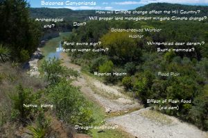 Cibolo Creek - 1 (1)