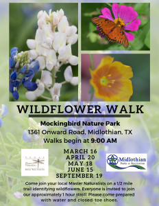 ITMN Wildflower Walk @ Mockingbird Nature Park