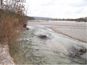 August Chapter Meeting – Can You Restore a Creek By Doing Nothing? @ Brookhaven College